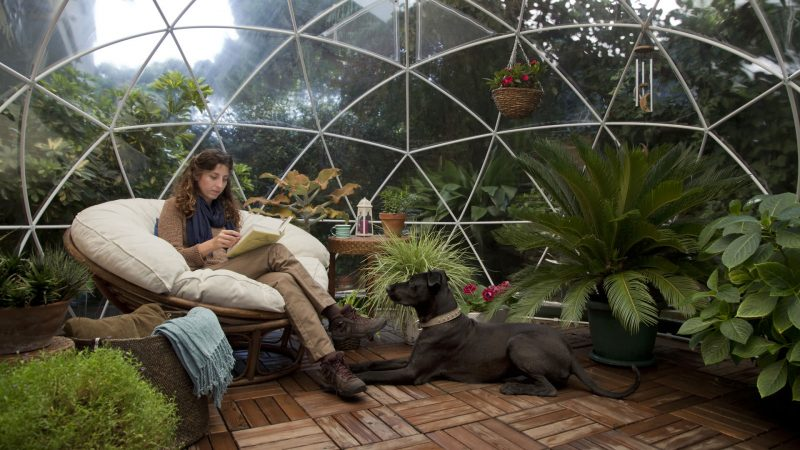 A Glimpse At Outdoor Igloo