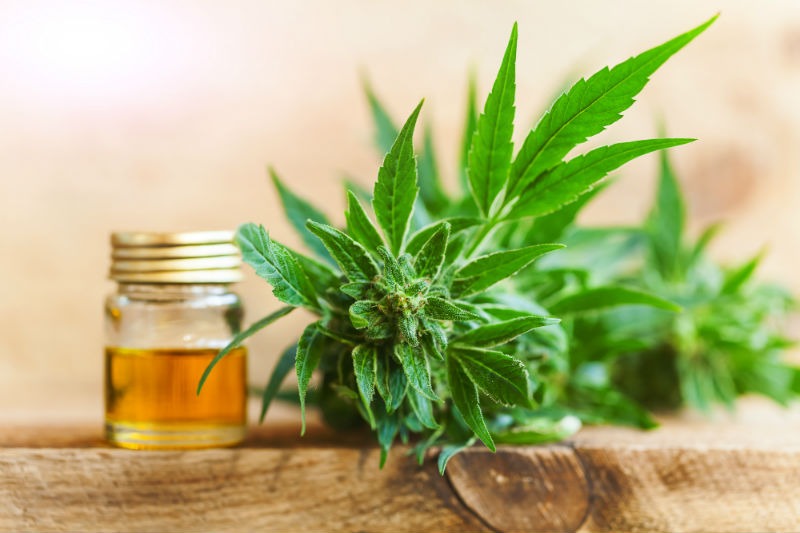 Facts About Organic CBD Oil