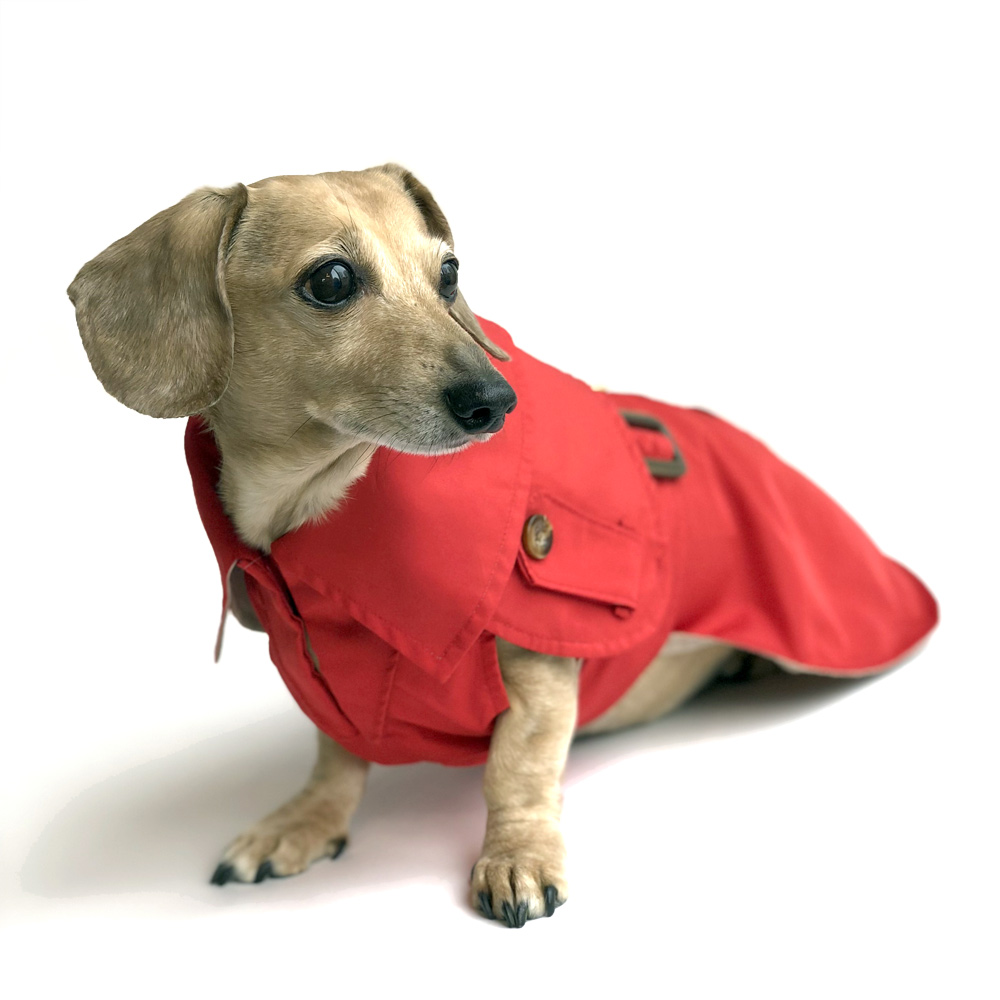 Features About Waterproof Dog Coat With Underbelly